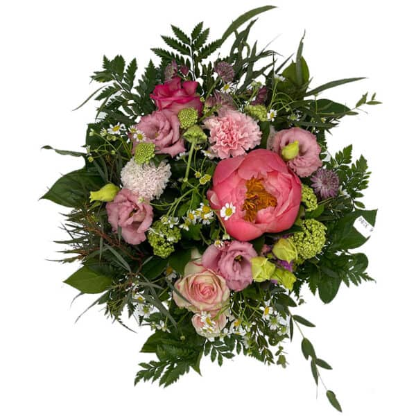 Blumen_Buchegger_Pfingstrosen_Staruß_800x800