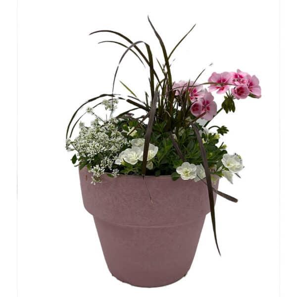 Pinker_Blumentopf_mit_Sommerblumen_Blumen_Buchegger_800x800